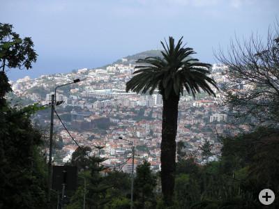 Blick vom Botanischen Garten auf die Innenstadt von Funchal